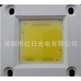红日光 AC-220V陶瓷板COB 免驱动 220V直接点亮 20W
