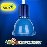 百里挑一‖生鲜照明 30W蓝色 LED海鲜水产区专用生鲜灯 超市灯