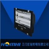 宏海照明 无极灯 泛光灯HH-DGF002