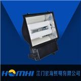 宏海照明 无极灯 泛光灯 HH-DFG001