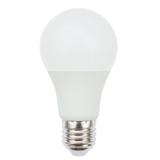 10W A60 LED 球泡灯