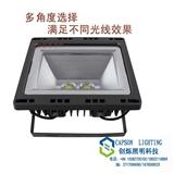 创烁 新款LED投光灯景观灯广告灯外墙灯照树灯