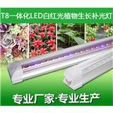 LED植物生长灯 CPPOT生长灯 补光灯