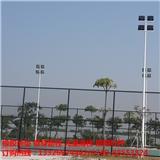 珠海市定制高度颜色灯杆 斗门生产厂家直销户外篮球场灯杆