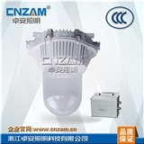 ZGE601防眩应急泛光灯(NFE9180)35W、70W、100W