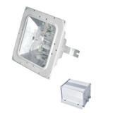 ZGE603防眩应急棚顶灯(NFE9100)35W、70W、100W