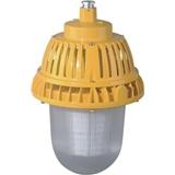 ZBD130 LED免维护防爆平台灯 80W、100W、130W