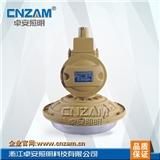 ZBW501-I 免维护节能防爆灯