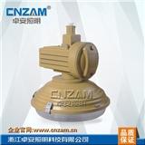 ZBW502免维护节能防爆灯