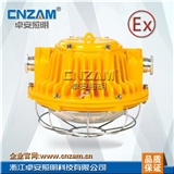 DGS24/127L(B)矿用隔爆型LED巷道灯