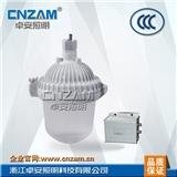 ZGE602防眩应急泛光灯(NFE9112)