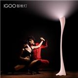 IGOO创意主卧室灯温馨浪漫简约后现代客厅灯房间个性led落地灯具