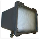 型号:HFL30 球场灯具