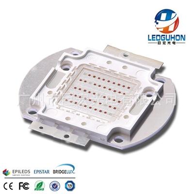 红蓝光9:1植物灯LED集成模组 50WCOB光源led灯珠