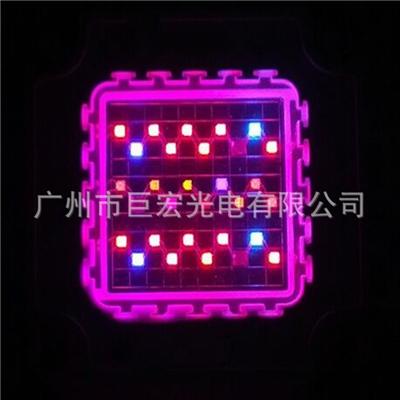 大功率30W集成灯珠 七波段灯珠 植物灯LED灯珠