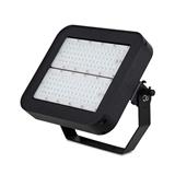 LED 模组泛光灯/100W 飞利浦芯片泛光灯/贴片泛光灯/调光泛光灯/感应泛光灯/