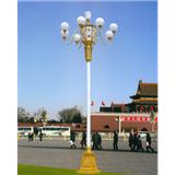威牌路灯8米10米12米中华灯路灯灯杆灯罩户外照明厂家定制批发