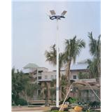 威牌路灯8-10米高杆灯厂家直销市政工程小区别墅亮化道路灯广场商业街