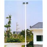 威牌路灯8-10米高杆灯厂家直销市政道路工程亮化