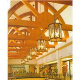 威牌路灯铜制室内户外防水简欧餐厅商场走廊吊灯