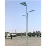 威牌路灯北京鸟巢路灯市政道路大型广场中华灯厂家直销