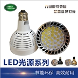 PAR30 帕灯光源 LED光源 聚光光源 E27LED光源
