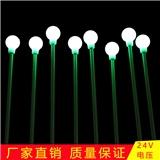 led户外景观灯 厂家直销户外插地灯 庭院园林草坪绿化装饰灯 直径4cm圆球灯 户外防水led芦苇灯