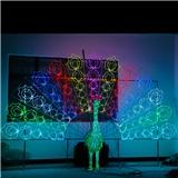 孔雀造型灯广场活动展览灯具梦幻灯光节LED立体造型灯 厂家定制 户外防雨
