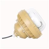 XQW1110免维护防爆节能灯