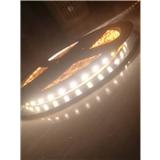 LED5050 12v低压防水贴片 展柜led灯条 3528LED高亮LED软灯条厂家直销