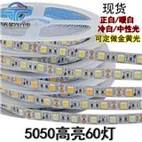 12V高亮5050软灯带60灯 1盘5米300灯 高亮铜支架软灯条 工厂现货直销