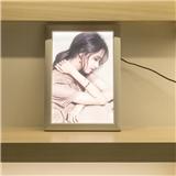 DSE导光板技术超薄灯箱广告灯箱广告面板