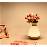 HZ-S1智能语音花瓶灯 暖光加五色氛围 艺术花瓶造型 装饰养花草