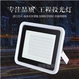 10-100w LED Floodlight Flat model