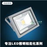 户外LED投光灯 厂家直销50WLED投光灯户外楼体公园广场LED泛光灯